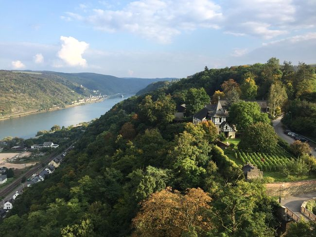 Lost In The Landscape Nature RiverRhein Burg Castle View View From Above