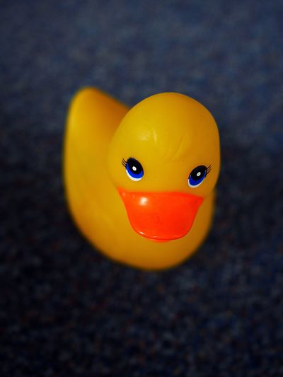 Close-Up Of Rubber Duck