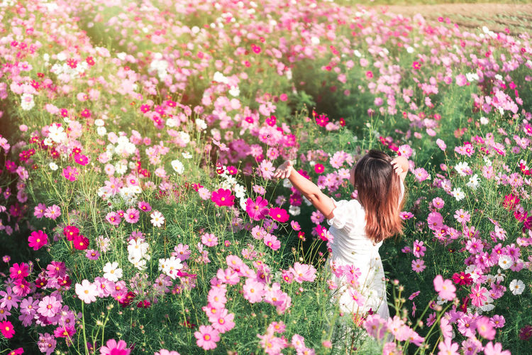 Woman standing by pink flowering plants on field