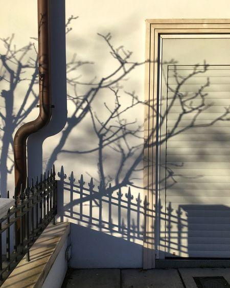 Shadows & Lights Shadows Ihavethisthingwithshadows Shadowpaintings Shadowart Shadowplay