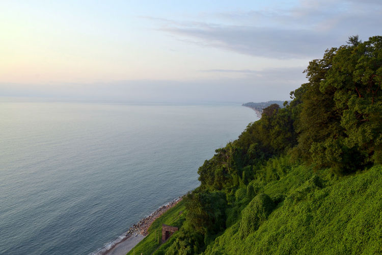 Batumi Botanical Gardens EyeEm Nature Lover Georgia Lost In The Landscape WeekOnEyeEm Beach Beauty In Nature Day Horizon Over Water Nature No People Outdoors Scenics Sea Sky Tranquil Scene Tranquility Tree Water