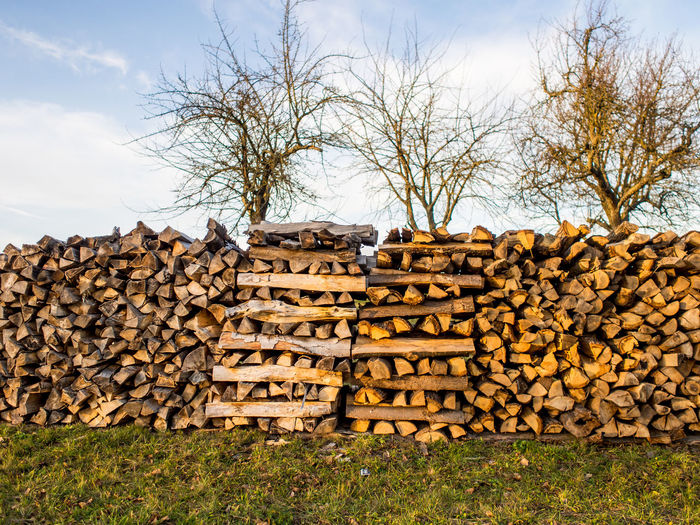 Firewood for the heating periode Wood Nature Sky Tree Day Outdoors Forest Plant Firewood Woodpile Stack Log No People Timber Deforestation Abundance Heap Large Group Of Objects Wood - Material Lumber Industry Heating Material