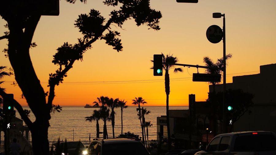 Silhouette Trees Against Calm Sea