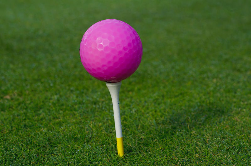 Close-up of pink golf ball on tree
