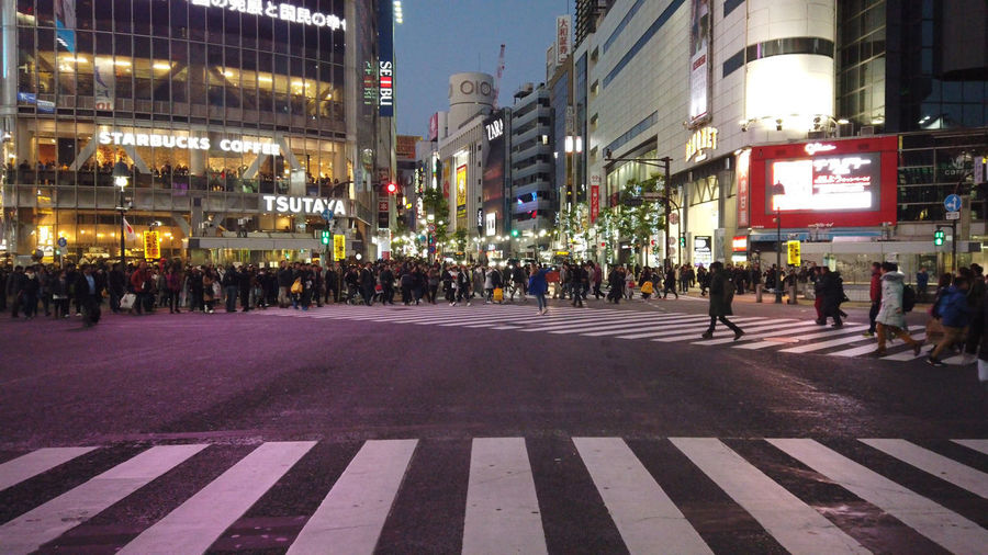 Japan Tokyo Street Urban People Shibuya Travel Destinations Evening Night Busy Street Shibuya Crossing Shibuyacrossing Landmark Nightlife Neon Travel Japan Travel Japan Trip  City Architecture Large Group Of People Building Exterior Crowd Built Structure Road Marking Group Of People Crossing City Life Real People Marking Zebra Crossing Crosswalk Transportation Sign Illuminated City Street Road Outdoors Light