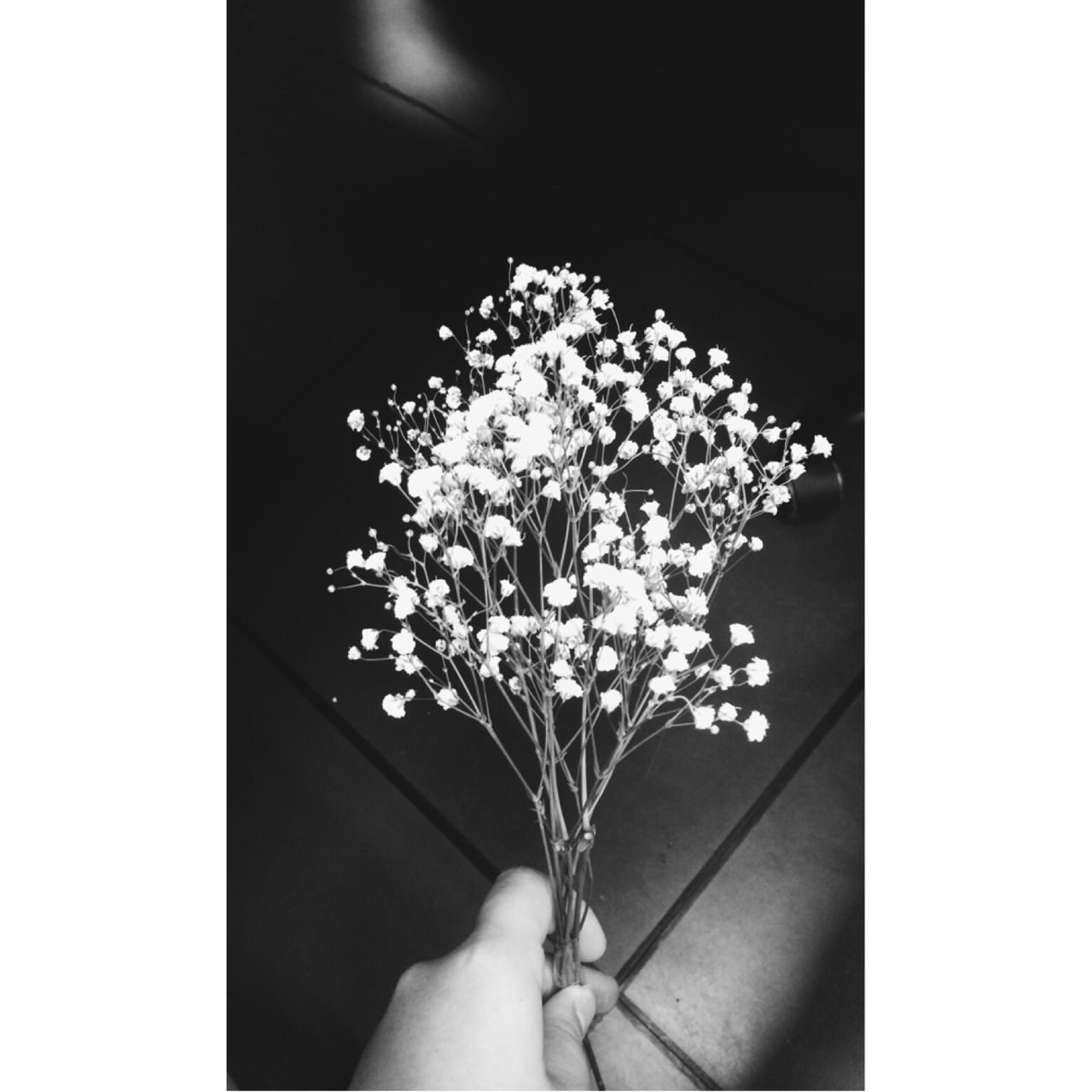 Hand holding twigs with flowers