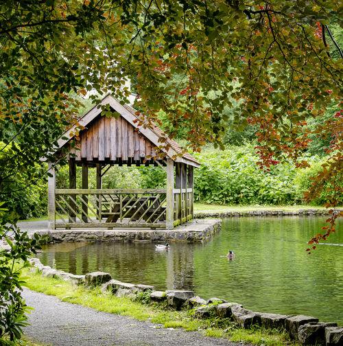 Pond Lake Water