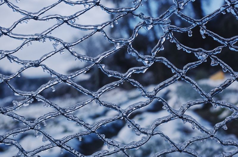 Detail shot of chainlink fence