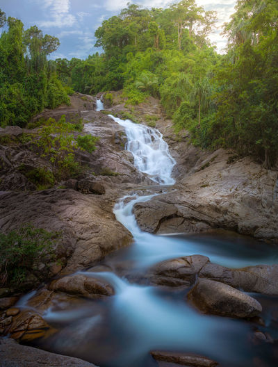 Tree Water Plant Beauty In Nature Scenics - Nature Flowing Water Motion Long Exposure Forest Rock Blurred Motion Land Waterfall Nature Solid Rock - Object Flowing No People Day Stream - Flowing Water Outdoors Power In Nature Rainforest