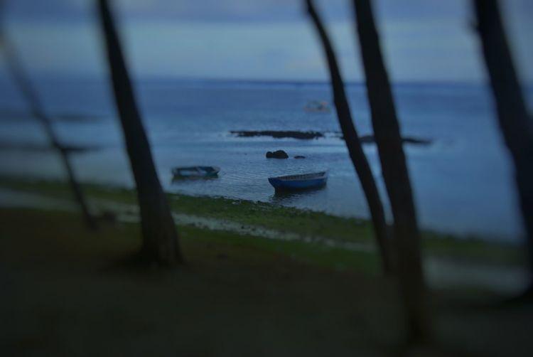 Ilhas Maurício, Nov. 2008