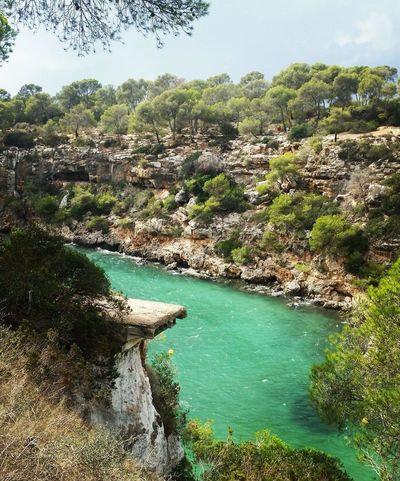Nature Beuty Beach Life Goodspot Love Water Sea Holiday Malllorca SPAIN Palma De Mallorca