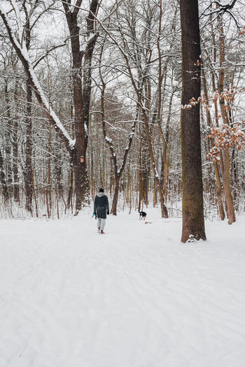 Rear view of man walking on snow covered land