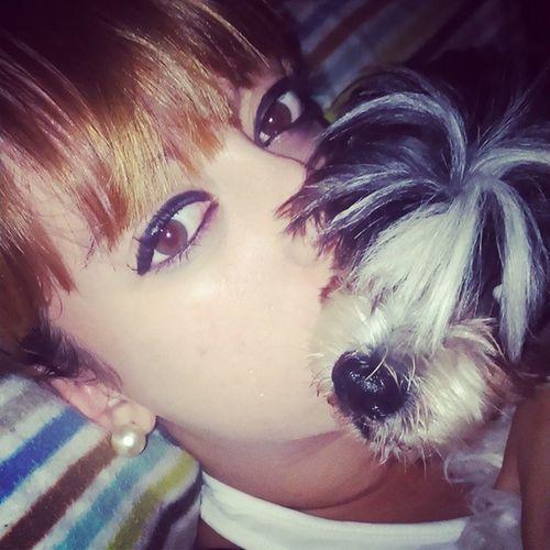 Pillada Dog Pet Love