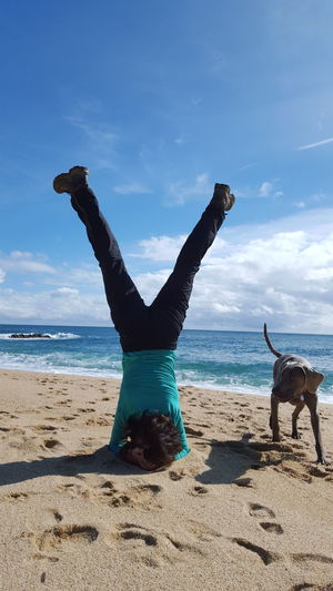 Rear view of man performing headstand by dog at beach against sky