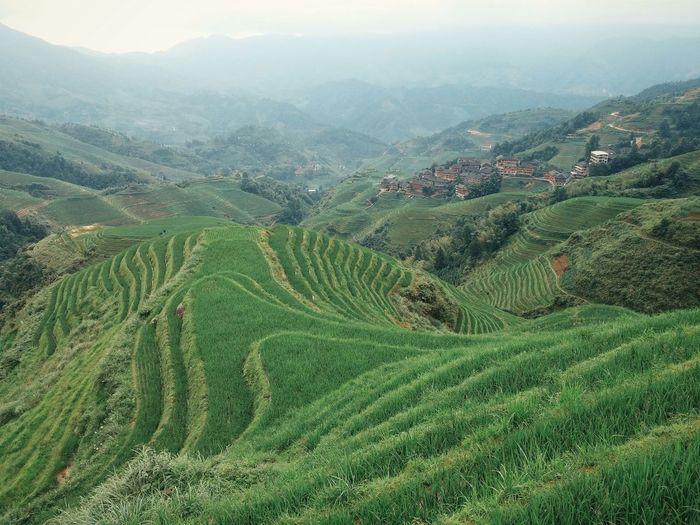 Longji Rice Terraces Against Sky