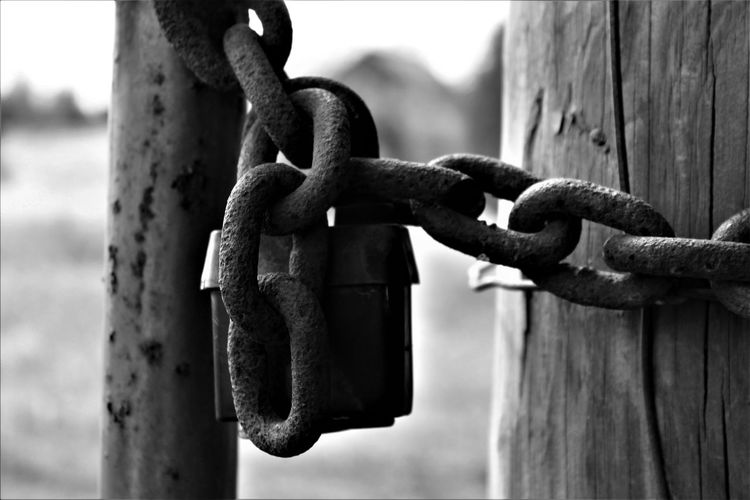 Close-up of padlock and chain on wooden posts