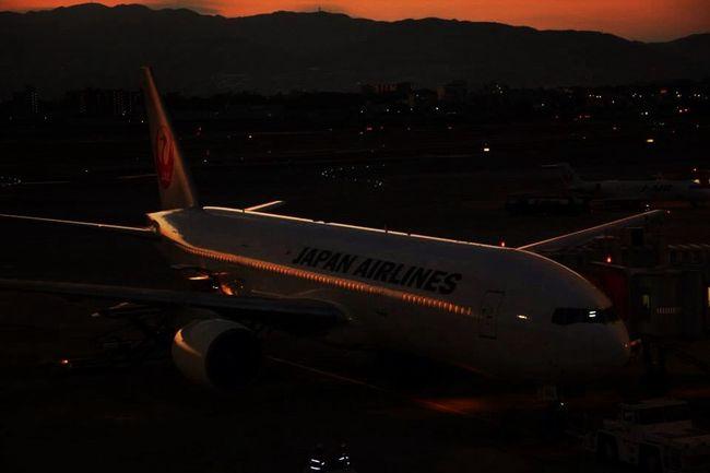 Japanairlines Itami Boeing777 Air Plane