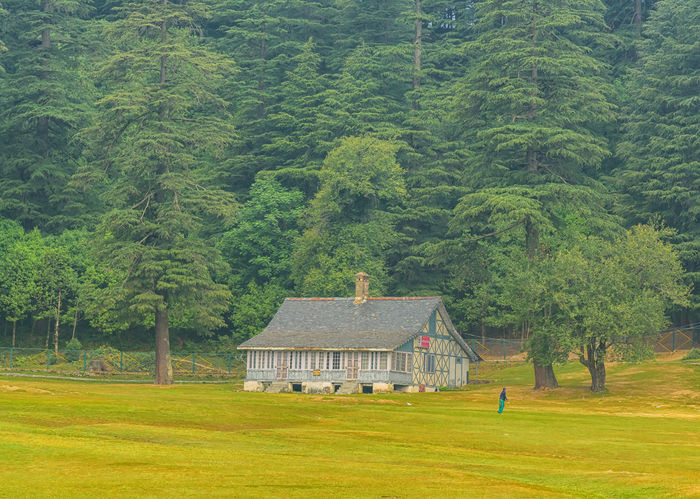 Himachal Diaries EyeEmNewHere Khajjiar Architecture Beauty In Nature Building Building Exterior Built Structure Cottage Day Environment Field Grass Green Color Growth House Land Landscape Nature No People Outdoors Plant Rural Scene Scenics - Nature Tree