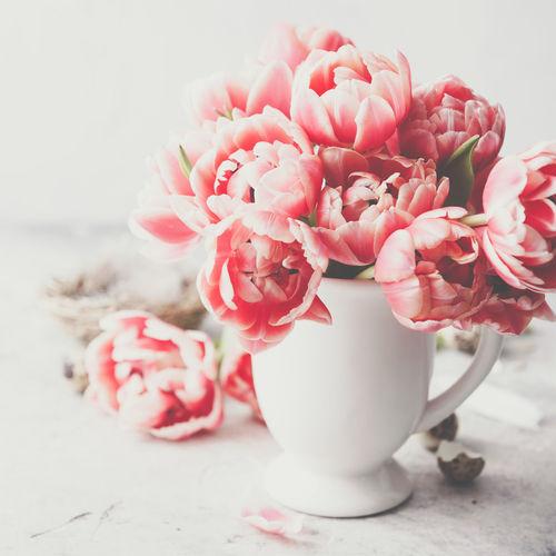 Pink Color Tulips Vase Flowers Holiday Easter Eggs Celebration April Spring Copyspace