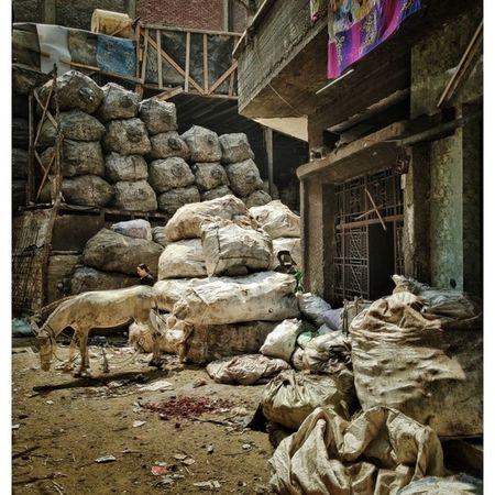 Eyem Best Shots garbage city. 65000 personas viviendo en este barrio de la basura de El Cairo Streetphotography Eye4photography