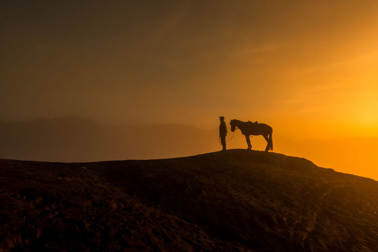 Silhouette man with horse on mountain against sky during sunset