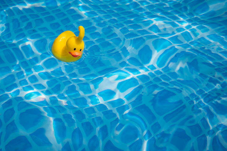 High angle view of yellow rubber duck in swimming pool