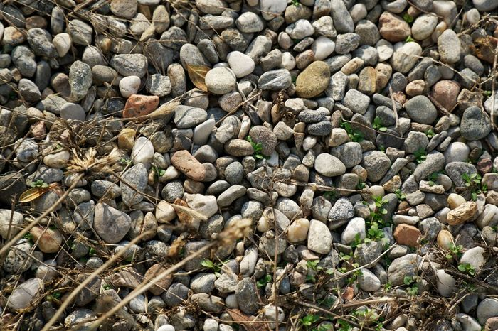 Abundance Art Backdrop Backgrounds Close-up Day Daydreaming Decoration Detail Full Frame Large Group Of Objects Nature No People Outdoors Pebble Pebble Beach Pebbles Pebbles And Stones Stone Stone - Object Stone Material Stones Sunny Day Wall - Building Feature Wallpaper