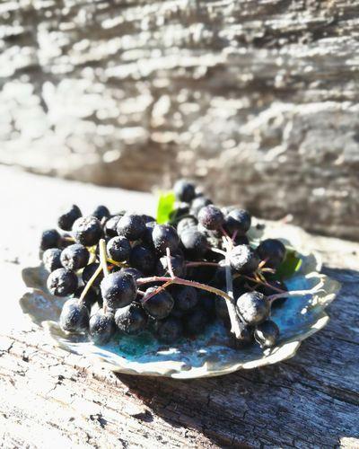 aroniabeeren Aronia Berries Aronia Berries Vitaminbomb Landhausstil Rustic Aronia Aroniaberries Superfood Berries Sea Life Close-up Destinations