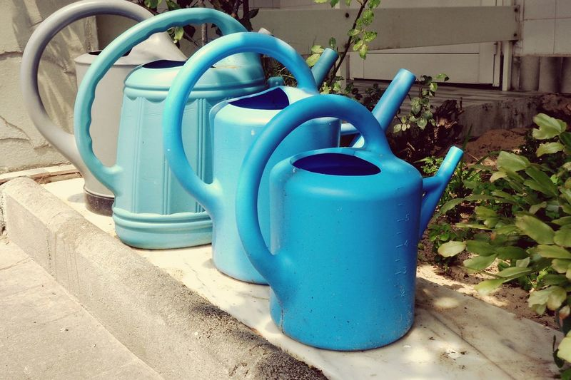 Gardenlife Garden Love Garden Regaderas Regaderas Azules Blue Color Blue Wateringcans Wateringplastic Platic Wateringcans Love Blue Loveblue Bluelovers In A Row Big To Small Small To Big Blue Outdoors No People Watering Can Day Close-up