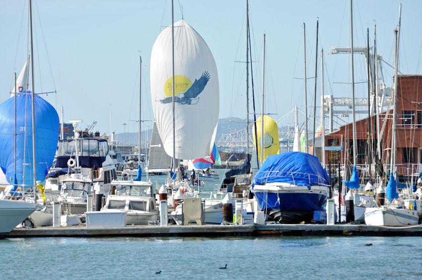 Sailboats Racing @ Embarcadero Cove 2 Action Sports Pastel Power Sailboats Tacking Colorful Sails