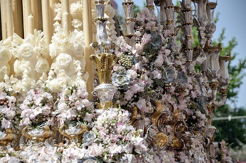 Flower Flowers Hermandad De Los Negritos Paso De Palio Semana Santa Sevilla Seville