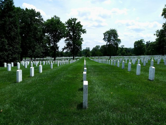Tree Military War Grave Cross Memorial Graveyard Cemetery Tombstone In A Row War Memorial Patriotism Monument National Icon Stars And Stripes