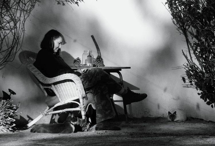 Full length of woman sitting chair in yard with cats