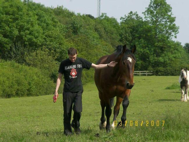 old selfie. Horse I Love Horses My Horse Nature Walking Naturelover