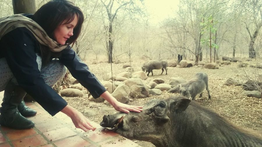 People And Places Outdoors Tranquility Marloth Enjoyment Touching a Warthog Daring Marloth Good Times