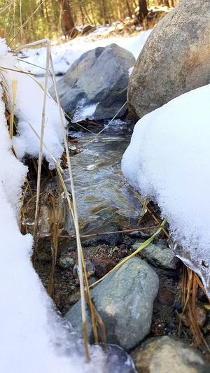 Rocks And Water Moving Water Nature Photography Walker Clean Stream White Relaxing Calming Secluded  Arizona Samsung Galaxy Note 5 Photography Prescott, AZ EyeEm Best Shots Snow Winter Cold Temperature Water Nature Day Outdoors Ice No People Frozen Tranquility Close-up Beauty In Nature Shades Of Winter