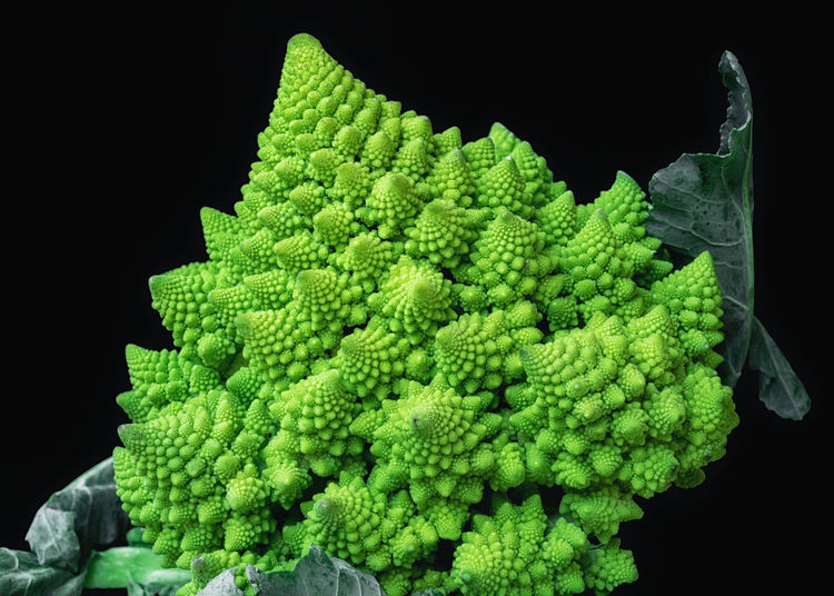 Black Background Broccoli Brocolli Close-up Food Food And Drink Freshness Green Green Color Healthy Eating Indoors  Natural Pattern Nature No People Pattern Raw Food Still Life Studio Shot Textured  Vegetable Wellbeing