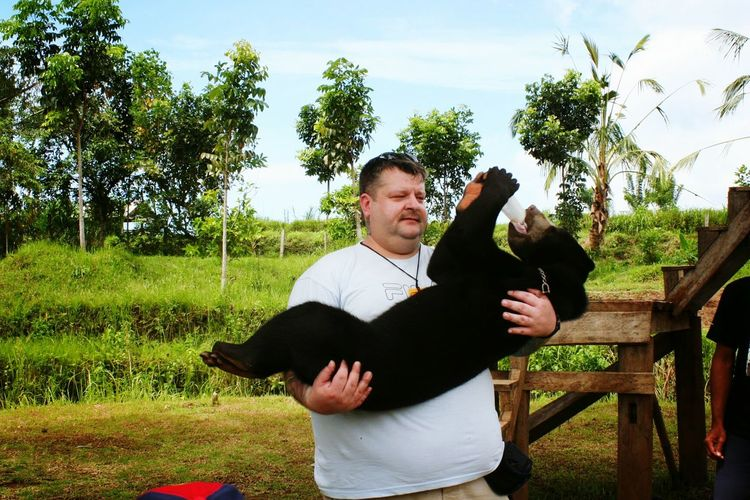 Male caretaker carrying black bear cub drinking from milk bottle