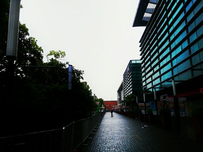 Rain Walking In The Rain Light And Shadow