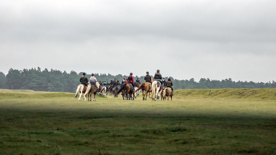 Rear view of people riding horses on landscape