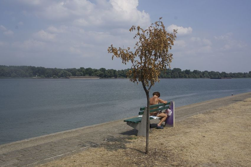Beach Beautiful Beauty In Nature Day Leisure Activity Lifestyles Mature Woman Nature Newspaper Reading Real People Relaxation Sand Sava River Scenics Sea Shore Sitting Sky Tranquil Scene Tranquility Tree Vacations Water Woman