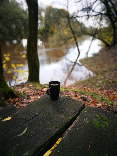 coffee brake by the flooding river #coffee #river #home #autumn Food Stories Autumn Forest Nature Outdoors Tree No People Day