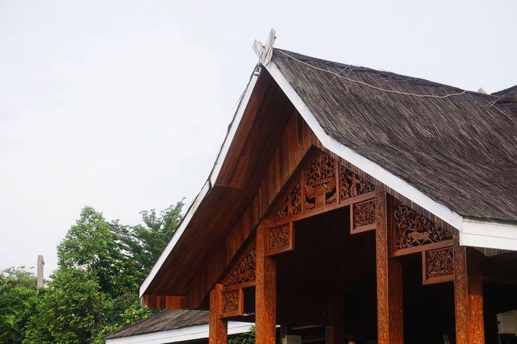 Roof Tree Wood