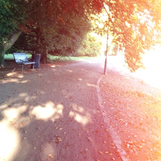 Running in the Autumn is so nice On A Day Like Today . Getting In Shape