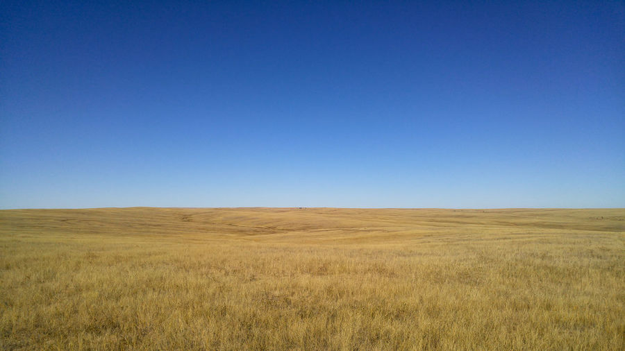 Plains Prairie Grass Grassland Big Sky Wide Open Spaces Sky Sunshine Empty Vast Landscape Horizon Silence Solitude Wind Field Scenics - Nature Tranquility Beauty In Nature Tranquil Scene Environment Rolling Landscape Outdoors Clear Sky No People