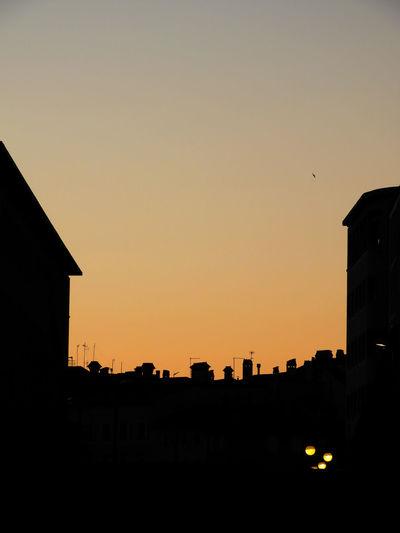 Trieste by