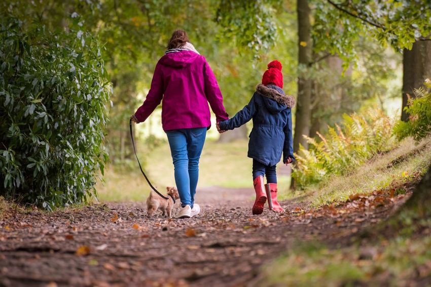 Laura, Sophia and oscar 🐾 Nature Photography Nature_perfection EyeEm Gallery Nikon Family❤ Women Two People Togetherness Full Length Childhood Child Girls Warm Clothing Positive Emotion Offspring Adult Plant Females Clothing Tree Bonding Nature Family Motion People