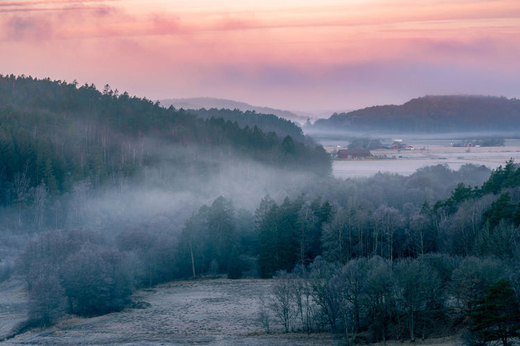 View over forest clad hills and open valleys on a cold foggy morning in southern sweden.