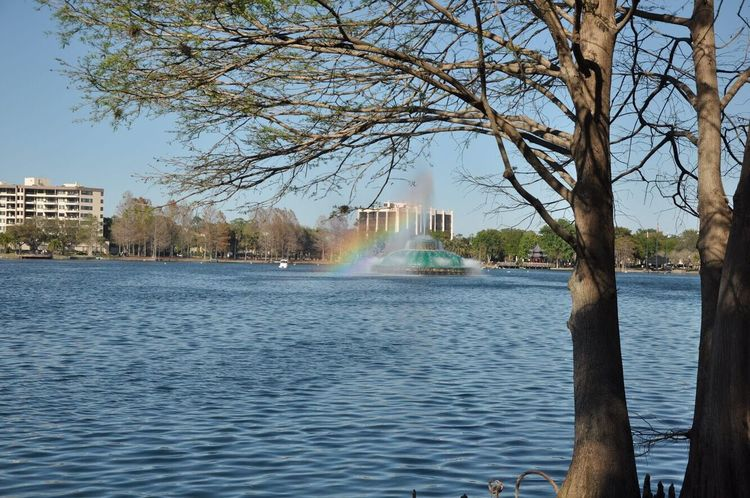 Sommergefühle Lake Water Tree Rainbow Nature Outdoors City Travel Destinations Scenics Built Structure Architecture Beauty In Nature Summer Sunny Day Sunlight Sky Spraying Tranquility Day Building Exterior Lake View Eola Park Eolalake