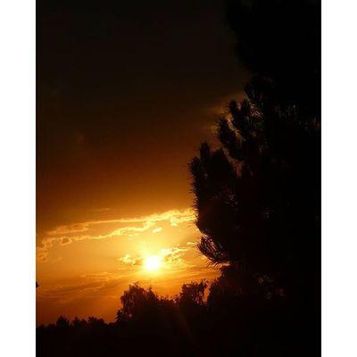 Sunset Yellow Colors Beautiful magic nature dark night